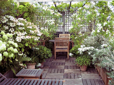 Des Jardins En Terrasses